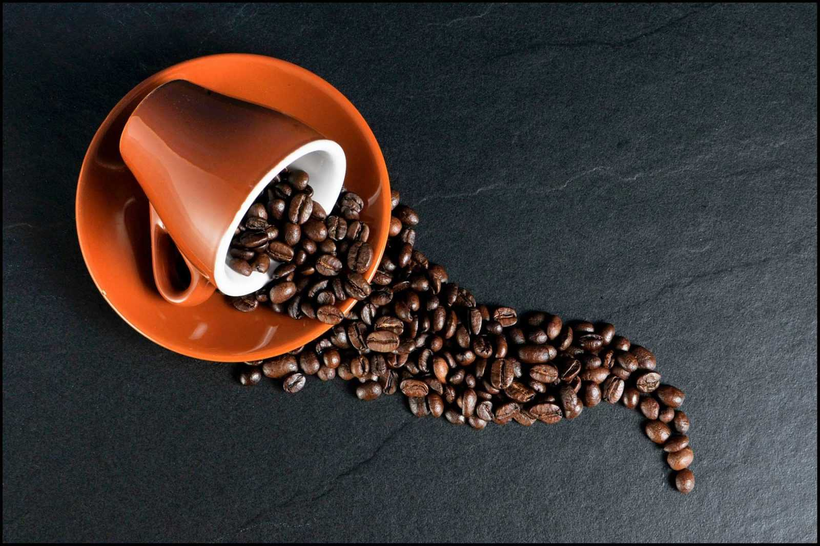 Il caffè è il sigillo di un buon pasto. Dove acquistare le migliori capsule online.
