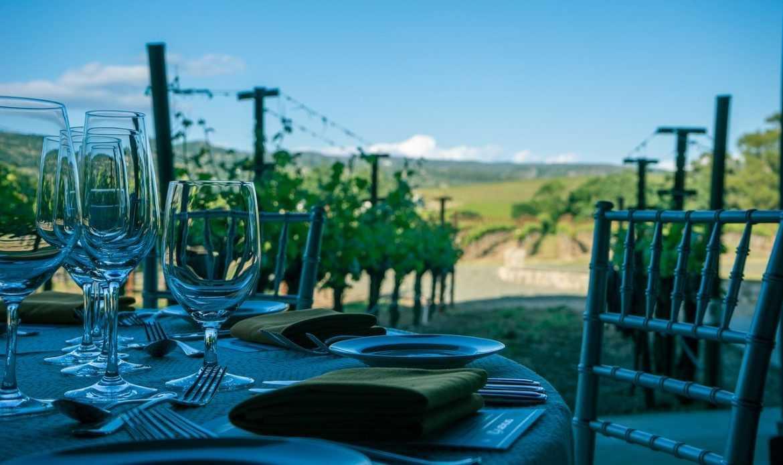 I vini della California: quali sono i migliori tre?