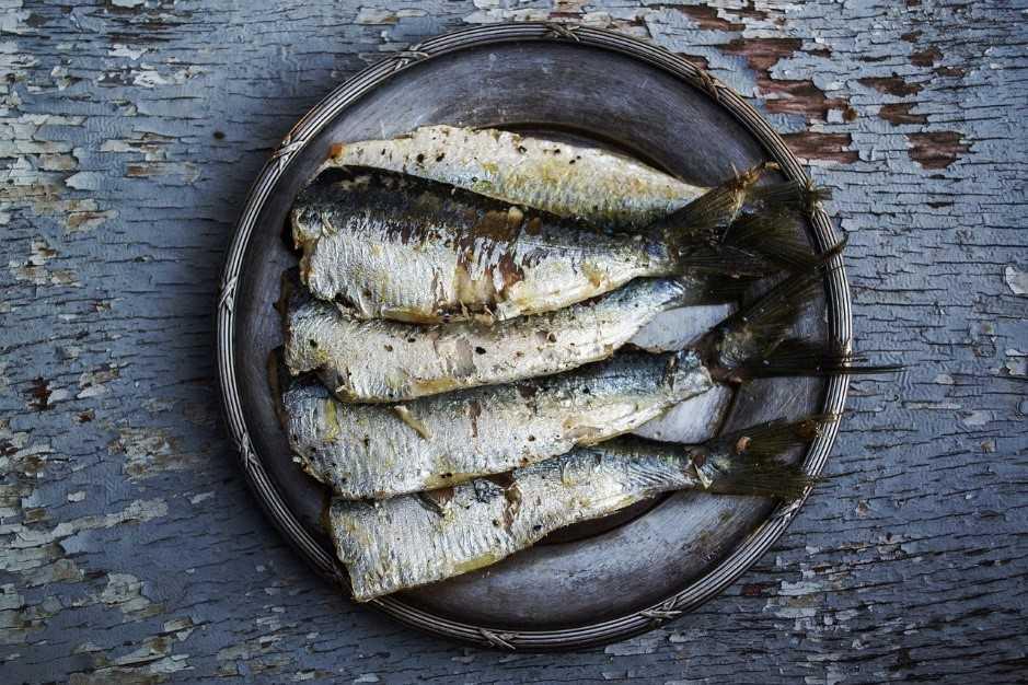 ricette con sardine